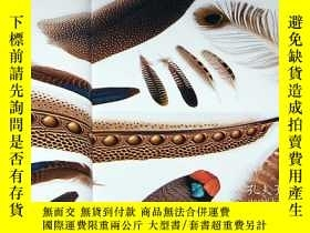 二手書博民逛書店Beautiful罕見Bird Feathers of the World : Illustration book