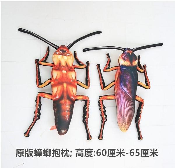 55CM 蟑螂抱枕 整人抱枕 蟑螂窩 爬蟲類 另類抱枕 另類小物 怪娃娃 小強抱枕毛絨玩具