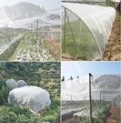 蔬菜大棚專用防蟲網豬場防蚊網果樹防蟲防白粉虱防鳥農用養殖圍網 快速出貨