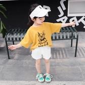 女寶寶夏裝新款短袖韓版兒童T恤女童夏季3上衣洋裝打底衫1-5歲2潮