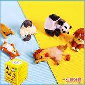《最後5個》全家集點 休眠動物功能小物 正版 玩具 小物 吸盤 磁鐵 療癒  D66026
