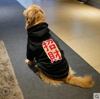 大狗狗衣服新年秋冬裝金毛拜年冬季拉布拉多薩摩耶寵物中型大型犬