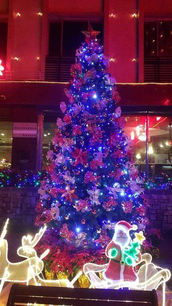 新北市永和花店情意花坊過年春節氣氛佈置/社區燈飾施工/聖誕樹出租耶誕燈飾(12呎)2015