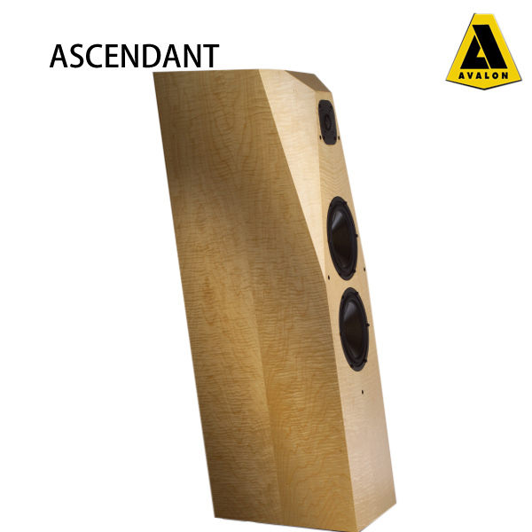 AVALON   ASCENDANT  (標準色)Cherry,Maple,Walnut