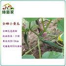 【綠藝家】G38.全雌小黃瓜種子2顆...