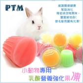 *WANG* 小動物專用乳酸營養強化果凍(牛奶/ 蘋果/ 葡萄/ 木瓜/ 草莓/ 香蕉口味) 100入