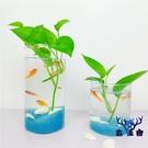 魚缸辦公桌魚缸面水培植物花瓶圓柱形迷你個性【古怪舍】