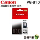 CANON  PG-810 黑色 原廠墨水匣 適用MP237 MP258 MP287 IP2770 等機型