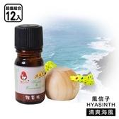 風信子 精油飄香瓶_超值12入裝(多種香味選擇)清爽海風