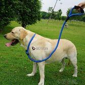 狗繩狗鍊子牽引繩金毛拉布拉多大型犬加粗加長P鍊P繩項圈寵物用品 沸點奇跡