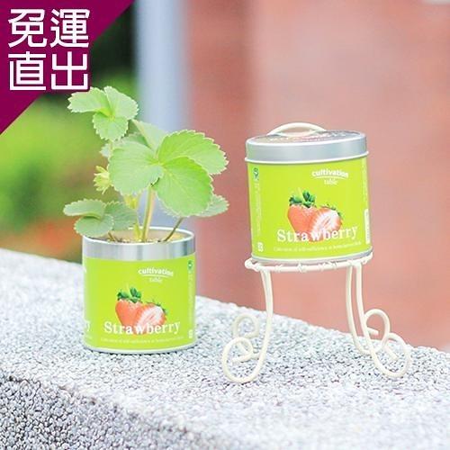 迎光 Cultivation Table栽培罐迷你草莓【免運直出】
