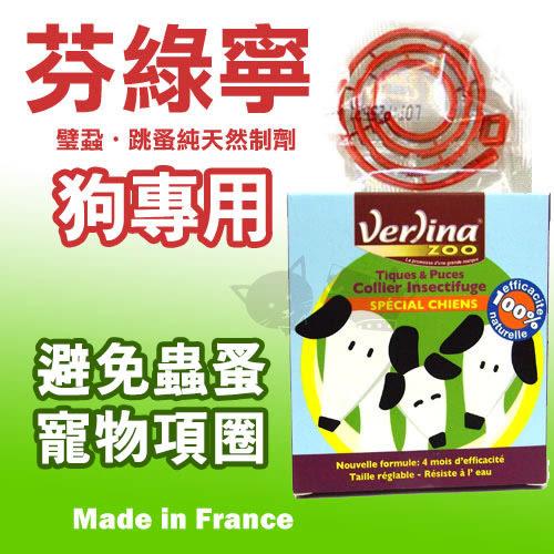 [寵樂子]《法國純天然芬綠寧Verlina》跳蚤 / 壁蝨 - 趨避項圈【防水】 / 狗專用