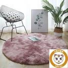 圓形地毯臥室客廳床邊北歐長毛家用墊子【小獅子】