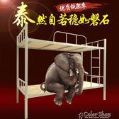 上下鋪鐵床學生宿舍雙層床武漢員工架子床1.2米成人高低床鋼架床   color shopYYP