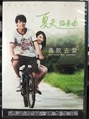 挖寶二手片-0B04-006-正版DVD-華語【夏天協奏曲】-張睿家 林逸欣(直購價)