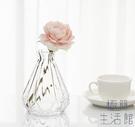 玻璃花瓶透明水培花器餐桌臺面裝飾【極簡生...