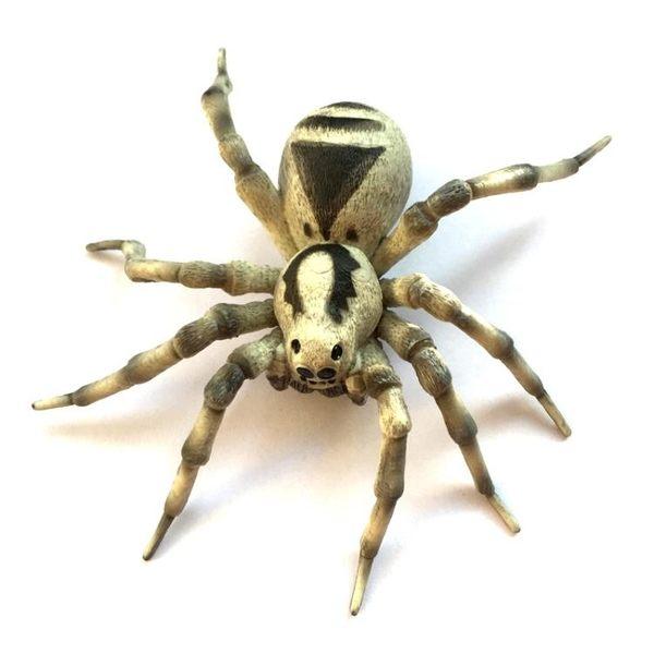 模型玩具 動物模型鬼臉蜘蛛模型玩具 歐美玩具 酷動3C