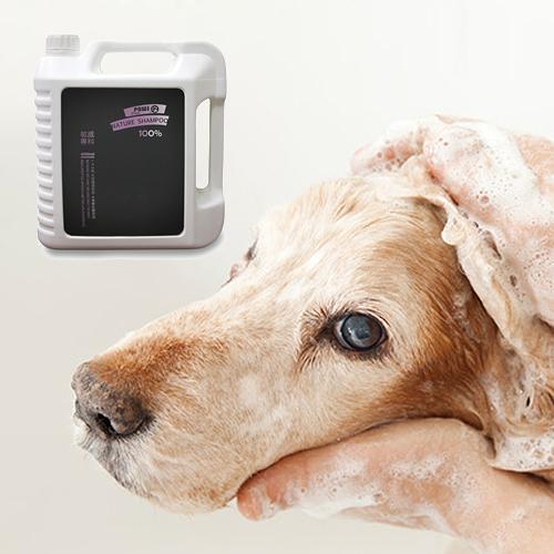 寵物用品 寵物沐浴乳 寵物洗澡 貓狗沐浴乳 毛小孩 瘋狂爪子 《YV6646》快樂生活網