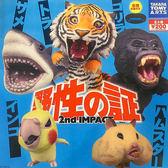 全套5款【日本正版】嘶吼的野生動物 P2 扭蛋 轉蛋 第2彈 野性之證 TAKARA TOMY - 831065