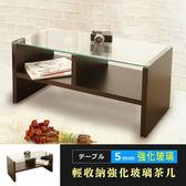 茶几 和室桌 5MM強化玻璃雙格收納茶几桌 咖啡桌 書桌 桌子 化妝桌 玻璃桌 邊桌 TA008 誠田物集