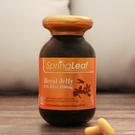 綠芙特級 頂級蜂王乳活妍軟膠囊EX(90顆/瓶)   第二代蜂王乳,含量更高