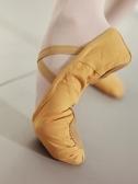舞蹈鞋女軟底練功鞋貓爪鞋成人形體跳舞鞋訓練顯腳背駝色芭蕾舞鞋