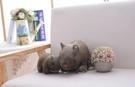 【21公分】仿真澳洲袋熊玩偶 俏皮布娃娃抱枕 聖誕節交換禮物 餐廳居家擺設裝潢布置