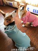 寵物雨衣 寵物狗雨衣中型犬柯基斗牛四腳高級面料雨衣粉藍兩色 傾城小鋪