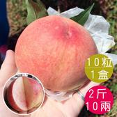 梨山水蜜桃10粒共2斤10兩(含運)