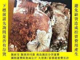 二手書博民逛書店SHIPWRECKED罕見- Tang treasures an