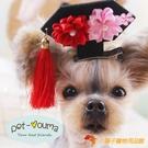 買1送1 古風新年裝格格寵物發夾狗狗變身格格寵物頭花頭飾飾品【小獅子】