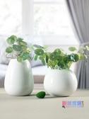 花瓶 陶瓷花瓶水培擺件仿真銅錢草插花客廳裝飾品創意現代北歐簡約白色【快速出貨】