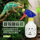 金德恩 台灣製造 LIXIT寵物用品鸚鵡鳥類爬蟲貓狗遊戲保濕噴霧瓶240cc