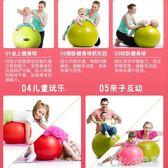 童感統訓練大龍球嬰兒寶寶早教康復球巴氏球 Chic七色堇