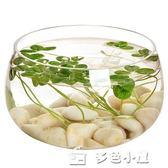 花瓶玻璃透明富貴竹 水培花盆大碼綠蘿歐式裝飾客廳擺件圓形魚缸父親節特惠下殺