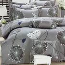 【免運】精梳棉 單人 薄床包被套組 台灣精製 ~絢麗風情/灰~ i-Fine艾芳生活