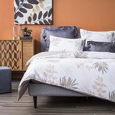HOLA 彩竹透氣天絲床包兩用被組加大