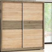 衣櫃 衣櫥 BT-18-1 艾斯妮6.6尺推門衣櫥【大眾家居舘】