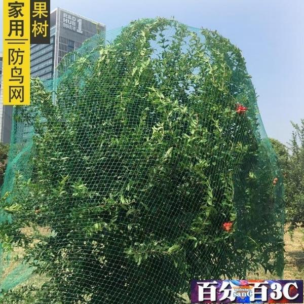 防鳥網 家用戶外西紅柿果園陽台防鳥網果園花園果樹 百分百