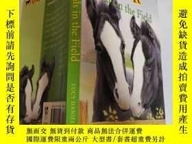 二手書博民逛書店foals罕見in the field 田野裏的小馬駒Y200392