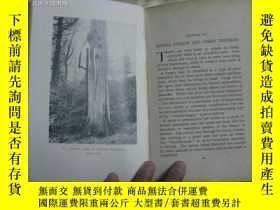 二手書博民逛書店THE罕見CARE REPAIR OF ORNAMENTAL TREESY10911 出版1934