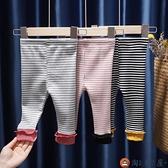 寶寶打底褲休閒男女童春秋裝兒童褲子純棉長褲子【淘夢屋】