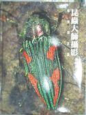 【書寶二手書T9/攝影_WGB】昆蟲大師攝影典藏集-保育類昆蟲_李惠承