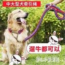 狗狗牽引繩狗鏈子中型大型犬金毛拉不拉多遛狗繩p鏈項圈狗狗用品 qz2598【甜心小妮童裝】