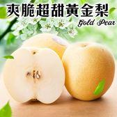 【果之蔬】嚴選爽脆超甜黃金梨X1顆(約400g/顆)