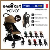 ✿蟲寶寶✿【法國Babyzen】可上飛機 Yoyo+ 嬰兒手推車 6m+ 白管車架搭8色可選