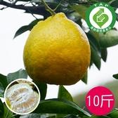椪柑(10台斤)免運組-產銷履歷