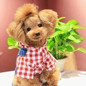 薄款狗狗衣服泰迪衣服寵物衣服比熊博美雪納瑞貴賓衣服【全館88折~限時】