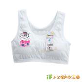學生內衣/少女胸衣/ 成長型胸衣9624