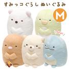 【角落生物 抱枕娃娃】角落生物 抱枕 玩偶 娃娃 M號 日本正版 該該貝比日本精品 ☆